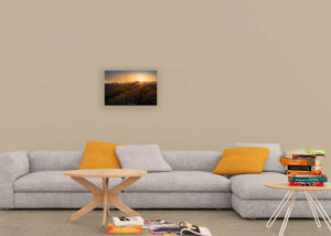 Living Room taille 50pc