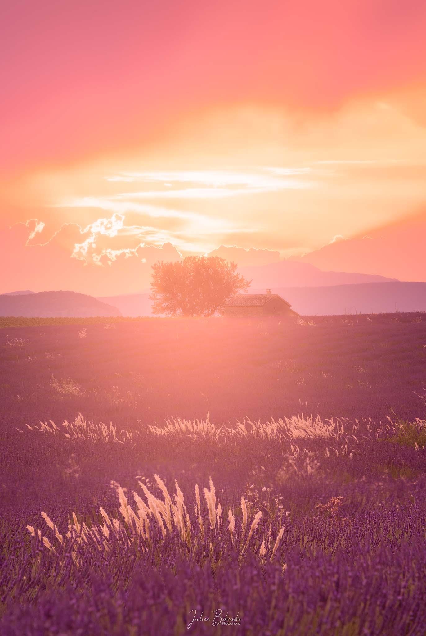 Coucher de soleil magique (Valensole - France)