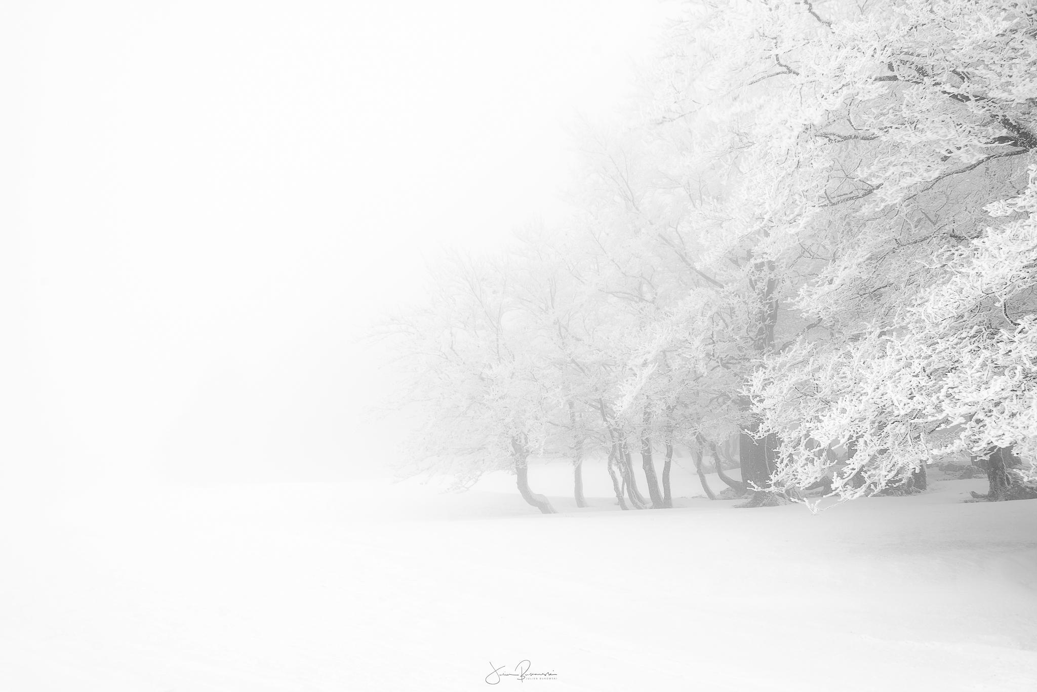 Foggy time - Après
